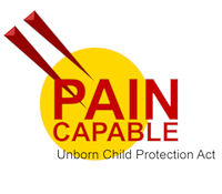 Pain Capable  Unborn Child Protection Act