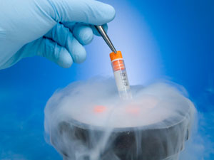 Freezing human eggs